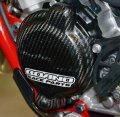 Boano カーボンイグニッションプロテクター Beta RR2T125