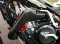 Righteous カーボンエキゾーストパイププロテクター Evo2T